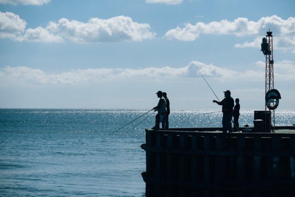 fiskeri_saeby_mole_1-1024x682